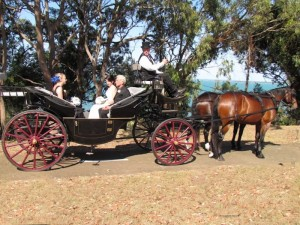 My Wedding Day with Carriage