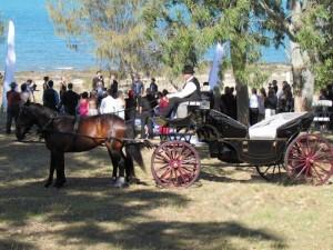 Pt Vernon Wedding Day