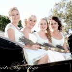 Don Cross Wedding Carriage