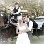 My Wedding Carriages - photo by 'Moments By Ange'